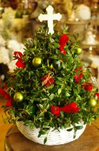 Seasons Greetings Boxwood Tree