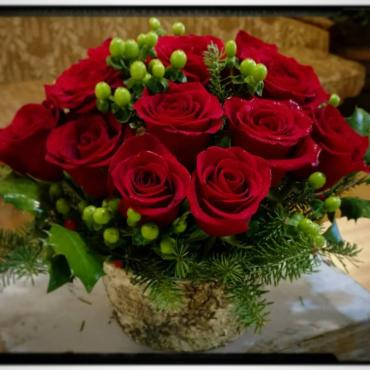 Winter Roses (red)
