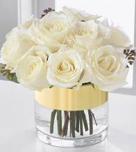 Dozen White Compact Cylinder Roses