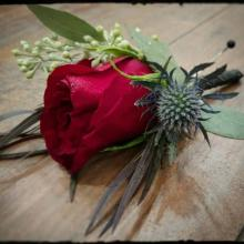 Burgundy rose with eryngium & seeded eucalyptus
