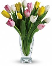 Tulip Bouquet, Mixed