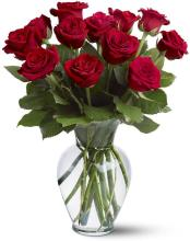 12 Red Roses Vased, Premium