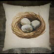 Nest Eggs Pillow