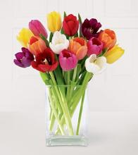 Mixed Tulip Vase, Brights