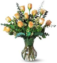 Dozen Peach Roses with Eucalyptus
