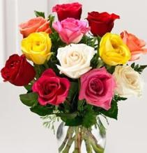 12 Premium Long Stemmed Mixed Color Roses, Vased