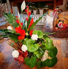 Christmas Plant Garden in a Basket