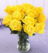 Yellow Roses Vased, Dozen