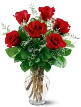 6 Red Roses, Vased & Dressed